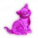 Kotek różowy