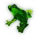 Лягушка темно-зеленая
